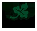wilson lake logo
